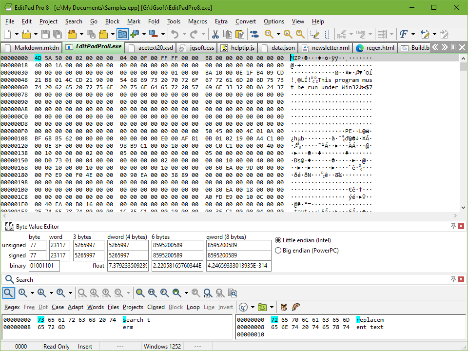 2 in 1 text editor and hexadecimal binary file editor